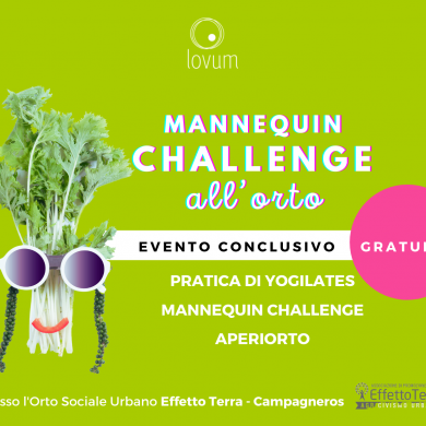 MANNEQUIN CHALLENGE all'ORTO